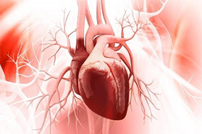 Cardiologist In Pune |Interventional Cardiologist in Pune